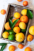 Citrus fruit in a wooden tray