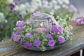Windlicht in Kranz aus weißem Labkraut und Blüten der Flammenblume