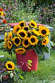 Üppiger Strauß aus Sonnenblumen im roten Blechkübel