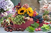 Erntedank-Dekoration mit Sonnenblumen, Hopfen, Äpfeln, Weintrauben, Herbstchrysantheme, Amaranth, Kastanien, Brombeeren und Zieräpfeln