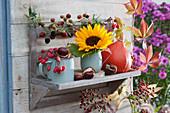 Wandregal herbstlich mit Sonnenblume, Hokkaido-Kürbis, Kastanien, Zieräpfeln und Brombeerzweig