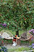 Kleine Sitzgruppe mit Hund Zula vor Zierapfelbaum