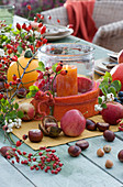 Herbstliche Tischdeko mit Windlicht, Hagebutten, Kürbis, Äpfeln, Kastanien, Schneebeeren, Haselnüssen und Zierapfelzweig