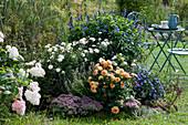 Herbstbeet mit Chrysantheme 'White Bouquet', Aster 'Sapphire', Dahlie 'Gelbe Crellin' und Ziersalbei Rockin, Fetthenne 'Painted Pebble' und Strauchhortensie