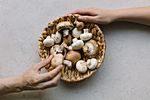 Anonymous persons touching fresh champignons placed in wicker bowl on table in kitchen