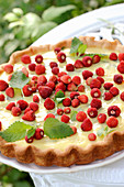 Wild strawberry tart with vanilla cream