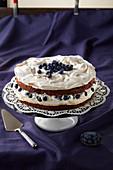 Meringue and blueberry cake