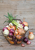Basket with different types of onions