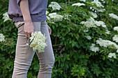 Woman with freshly picked elderflower