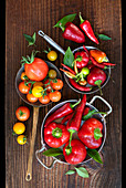 Red pepper, chilli and tomato variety