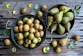 Small pears in metal dishes on a wooden table top in the garden