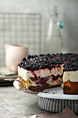 Double cheesecake with blueberries