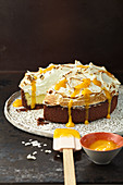 Coconut lemongrass brulee cake with vanilla meringue