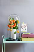 Tulpenstrauß unter großer Glasglocke