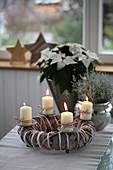 Adventskranz mit Weihnachtsstern und Greiskraut