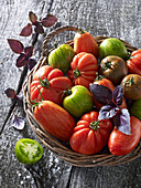 Various tomatoes with basil in a wicker basket
