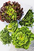 Spring lettuces – cos lettuce, butterhead lettuce, rocket, spinach