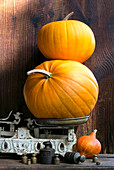 Yellow pumpkins and scale