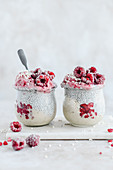 Chia pudding with expanded millet and frozen raspberries
