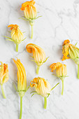 Fresh zucchini blossoms arranged on marble table in kitchen