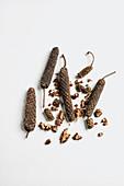 Long pepper in scoop, close-up
