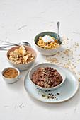 Three types of porridge: chocolate, apple, and carrot