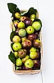 A wooden panier filled with freshly picked green and purple figs