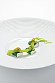 Mangold mit Joghurt, Ingwersaft und Oliven-Fenchel-Mischung