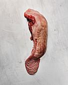 Raw beef tongue