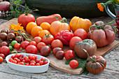 Tomatenvielfalt: Fleischtomate 'Tschernij Prinz', Ananastomate, 'Ochsenherz', rote runde Tomaten,gelbe runde Tomaten, gestreifte Cocktailtomate 'Black Zebra', Flaschentomate und Kirschtomaten