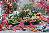 Herbstdekoration mit verschiedenen Kürbissen, Brombeeren und Herbstlaub