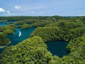Aerial view of marine lake in Ngermid Bay, Palau
