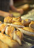 Close up of fresh bread in bakery