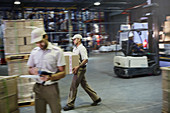 Workers carrying and moving boxes with forklift