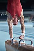 Male gymnast on pommel horse