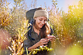Young woman hiking, picking flower in field