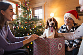 Happy family with dog in Christmas gift box