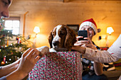 Family with dog in Christmas gift box