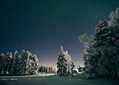 Starry night sky over idyllic snow covered trees, Sweden