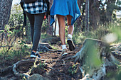 Female hikers on trail in woods