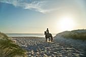 Young woman horseback riding on idyllic sunny ocean beach