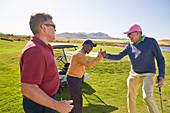 Male golfers celebrating on sunny golf course