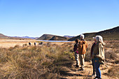 Senior friends on safari watching zebras in distance