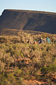Group walking along sunny grassland landscape South Africa