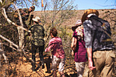 Safari tour group walking through trees