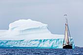 Ship sailing along majestic iceberg on
