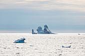 Iceberg formation on Atlantic Ocean Greenland