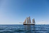 Ship sailing on blue arctic Atlantic Ocean Greenland