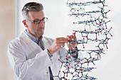 Science teacher assembling molecule model in classroom