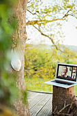 Face mask hanging on tree near friends video chatting